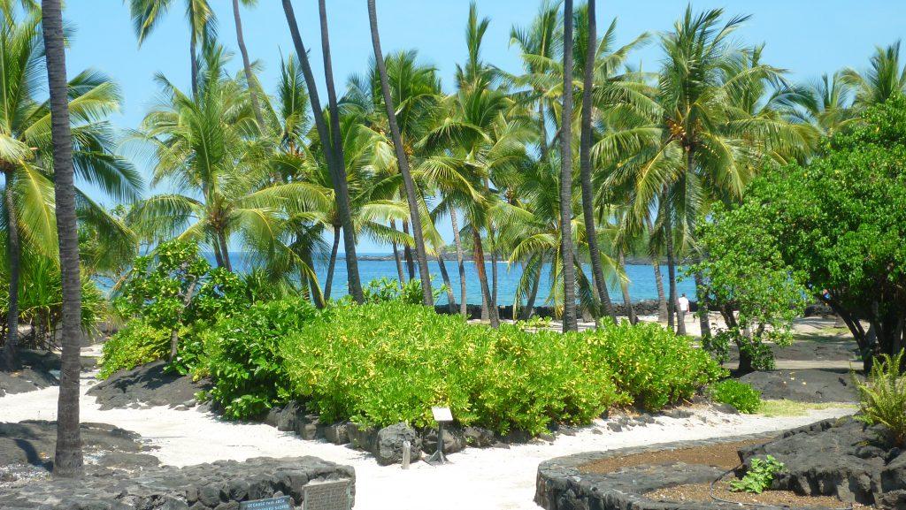 Hawaiifotos